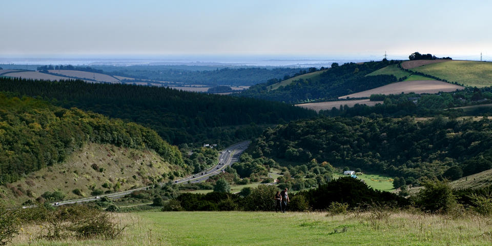 View from Butser Hill