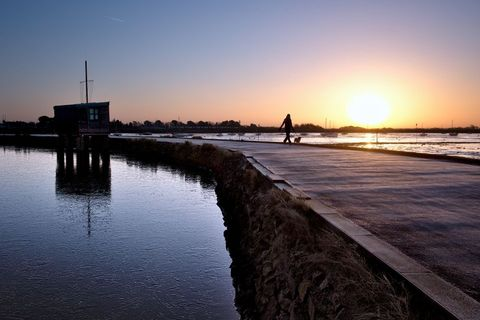 Sunrise over frozen Emsworth Mill Pond and dog walker