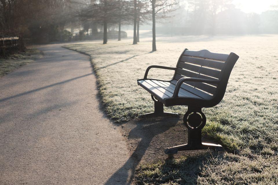 Frozen Bench warmed by Sun