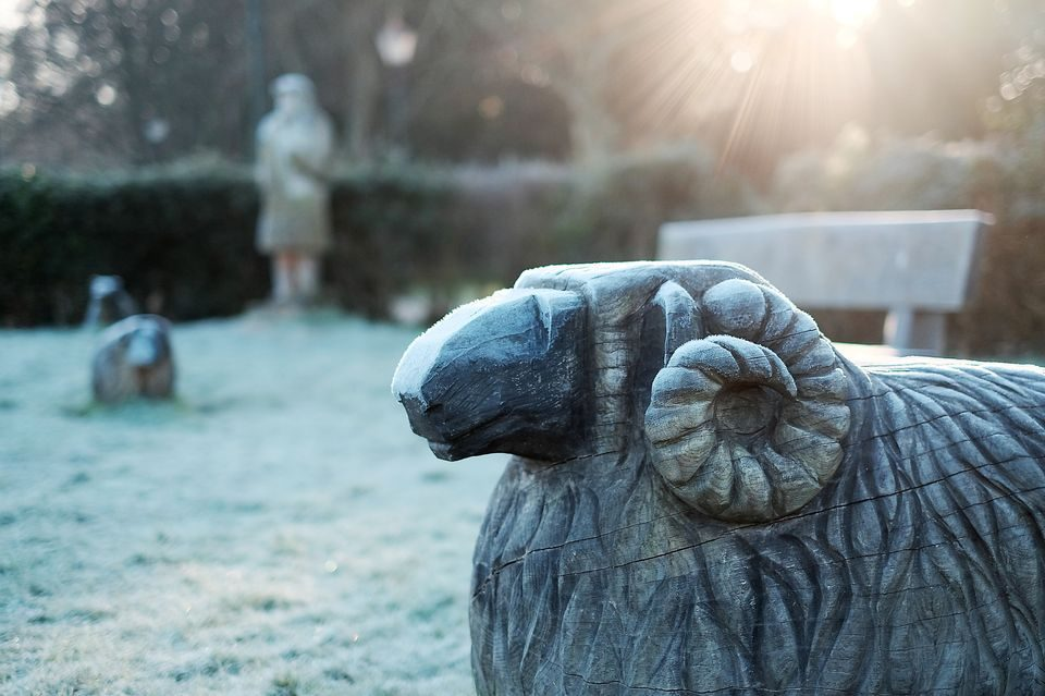 Ram sculpture covered in frost