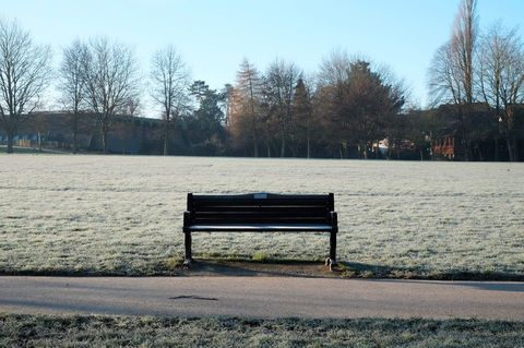 Bench in a field